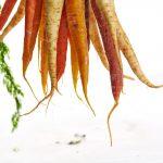 high beta carotene lower mortality